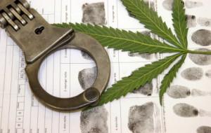 Marijuana Possession Defense Attorney NJSA 2C:35-10