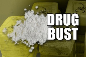 cocaine distribution bust