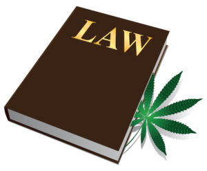 New Marijuana Rules in NJ